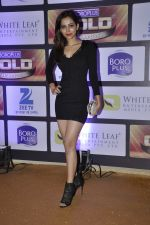 at ZEE Gold Awards on 9th June 2016 (192)_575a882f0c726.JPG