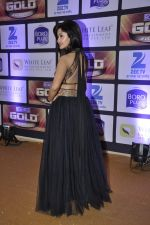 at ZEE Gold Awards on 9th June 2016 (194)_575a88316f5ad.JPG
