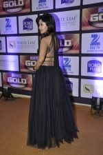 at ZEE Gold Awards on 9th June 2016 (195)_575a8832ed57e.JPG
