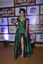 at ZEE Gold Awards on 9th June 2016 (204)_575a8836b18be.JPG