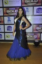 at ZEE Gold Awards on 9th June 2016