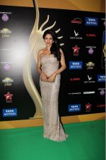 Sridevi on the IIFA stage on 14th June 2016_57603c1968d77.JPG