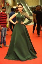 at CINEMAA AWARDS red carpet on 13th June 2016 (82)_575f81768354d.jpg