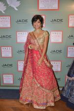 Sayani Gupta at Vogue wedding show on 15th June 2016