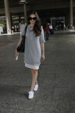 Evelyn Sharma snapped at airport on 16th June 2016