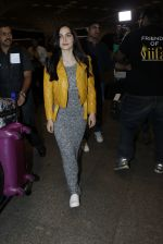 Elli Avram leave for IIFA day 1 on 20th June 2016