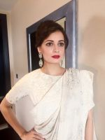 Dia Mirza wearing tone-on-tone ivory sari by Varun Bahl and earrings by Aurelle and a classic red pout (2)_576a90d03832a.JPG