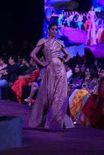 An Ode To Weaves and Weavers Fashion show at HICC Novotel, Hyderabad on June 21, 2016 (137)_576be548464db.JPG