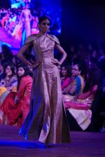 An Ode To Weaves and Weavers Fashion show at HICC Novotel, Hyderabad on June 21, 2016 (139)_576be55610016.JPG