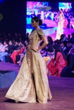 An Ode To Weaves and Weavers Fashion show at HICC Novotel, Hyderabad on June 21, 2016 (141)_576be5611f426.JPG