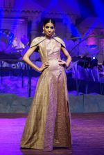 An Ode To Weaves and Weavers Fashion show at HICC Novotel, Hyderabad on June 21, 2016 (149)_576be590d9a82.JPG