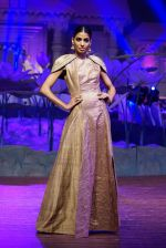 An Ode To Weaves and Weavers Fashion show at HICC Novotel, Hyderabad on June 21, 2016 (152)_576be5a1df806.JPG