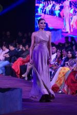 An Ode To Weaves and Weavers Fashion show at HICC Novotel, Hyderabad on June 21, 2016 (159)_576be5ccaa218.JPG