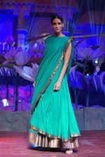 An Ode To Weaves and Weavers Fashion show at HICC Novotel, Hyderabad on June 21, 2016 (235)_576be730934cf.JPG