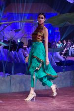 An Ode To Weaves and Weavers Fashion show at HICC Novotel, Hyderabad on June 21, 2016 (240)_576be738cf44d.JPG