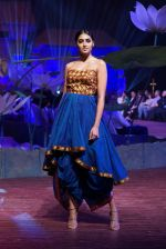 An Ode To Weaves and Weavers Fashion show at HICC Novotel, Hyderabad on June 21, 2016 (247)_576be748812c9.JPG