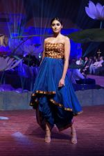 An Ode To Weaves and Weavers Fashion show at HICC Novotel, Hyderabad on June 21, 2016 (249)_576be74c3962c.JPG