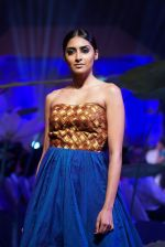 An Ode To Weaves and Weavers Fashion show at HICC Novotel, Hyderabad on June 21, 2016 (252)_576be7516f2ec.JPG
