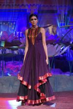 An Ode To Weaves and Weavers Fashion show at HICC Novotel, Hyderabad on June 21, 2016 (256)_576be75856130.JPG