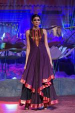 An Ode To Weaves and Weavers Fashion show at HICC Novotel, Hyderabad on June 21, 2016 (257)_576be75a4d1f8.JPG