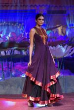 An Ode To Weaves and Weavers Fashion show at HICC Novotel, Hyderabad on June 21, 2016 (258)_576be75be2803.JPG