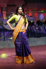An Ode To Weaves and Weavers Fashion show at HICC Novotel, Hyderabad on June 21, 2016 (336)_576be83dc502c.JPG