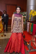 An Ode To Weaves and Weavers Fashion show at HICC Novotel, Hyderabad on June 21, 2016 (442)_576be97ee2f45.JPG