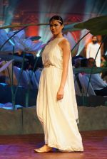 An Ode To Weaves and Weavers Fashion show at HICC Novotel, Hyderabad on June 21, 2016 (68)_576be416bc464.JPG