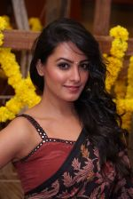 Anita Hassanandani Reddy at An Ode To Weaves and Weavers Fashion show at HICC Novotel, Hyderabad (10)_576bdb8ced620.JPG