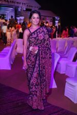 Anita Hassanandani Reddy at An Ode To Weaves and Weavers Fashion show at HICC Novotel, Hyderabad (5)_576bdb7d93179.JPG