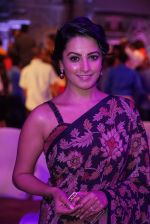 Anita Hassanandani Reddy at An Ode To Weaves and Weavers Fashion show at HICC Novotel, Hyderabad (7)_576bdb85984dc.JPG