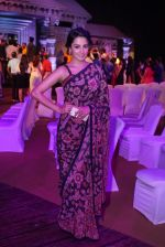 Anita Hassanandani Reddy at An Ode To Weaves and Weavers Fashion show at HICC Novotel, Hyderabad (3)_576bdb7a215c7.JPG