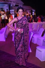 Anita Hassanandani Reddy at An Ode To Weaves and Weavers Fashion show at HICC Novotel, Hyderabad (4)_576bdb7bde4f9.JPG