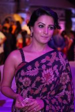 Anita Hassanandani Reddy at An Ode To Weaves and Weavers Fashion show at HICC Novotel, Hyderabad (8)_576bdb884bf44.JPG