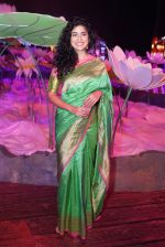 Anjala Zaveri at An Ode To Weaves and Weavers Fashion show at HICC Novotel, Hyderabad on June 21, 2016 (11)_576be248617a4.JPG