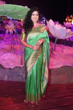Anjala Zaveri at An Ode To Weaves and Weavers Fashion show at HICC Novotel, Hyderabad on June 21, 2016 (12)_576be24b758f6.JPG