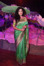 Anjala Zaveri at An Ode To Weaves and Weavers Fashion show at HICC Novotel, Hyderabad on June 21, 2016 (18)_576be25d052ba.JPG