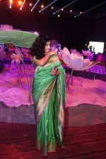 Anjala Zaveri at An Ode To Weaves and Weavers Fashion show at HICC Novotel, Hyderabad on June 21, 2016 (4)_576be229592d1.JPG