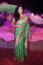 Anjala Zaveri at An Ode To Weaves and Weavers Fashion show at HICC Novotel, Hyderabad on June 21, 2016 (5)_576be22e08324.JPG