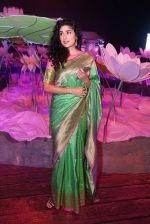 Anjala Zaveri at An Ode To Weaves and Weavers Fashion show at HICC Novotel, Hyderabad on June 21, 2016 (6)_576be2362445b.JPG
