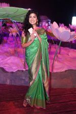 Anjala Zaveri at An Ode To Weaves and Weavers Fashion show at HICC Novotel, Hyderabad on June 21, 2016 (8)_576be23edb7af.JPG