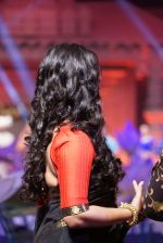 Anushka Shetty at An Ode To Weaves and Weavers Fashion show at HICC Novotel, Hyderabad on June 21, 2016 (125)_576bdec3c853c.JPG