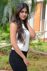 Chandani Chowdary Photoshoot (118)_576bb7779a60d.jpg