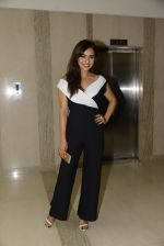 Neha Sharma at Kriti film premiere on 22nd June 2016 (41)_576b782a3b1be.JPG
