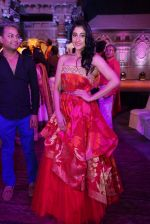 Regina Cassandra at An Ode To Weaves and Weavers Fashion show at HICC Novotel, Hyderabad on June 21, 2016 (3)_576be0f7e9196.JPG