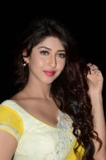 Sonarika Bhadoria Photoshoot (116)_576bb96999772.JPG