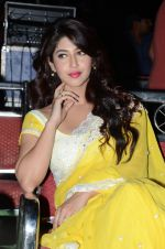 Sonarika Bhadoria Photoshoot (127)_576bb98003929.JPG