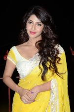 Sonarika Bhadoria Photoshoot (57)_576bb897df314.JPG