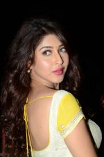Sonarika Bhadoria Photoshoot (66)_576bb8cd99a9a.JPG