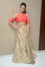 Sree Mukhi Photoshoot (22)_576bb75c67cf9.JPG